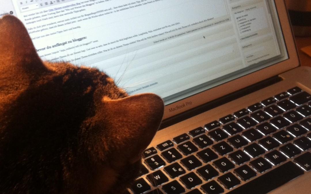 Tipps für Bloganfängerinnen – Mach dich sichtbar! #Blogparade #InWoche