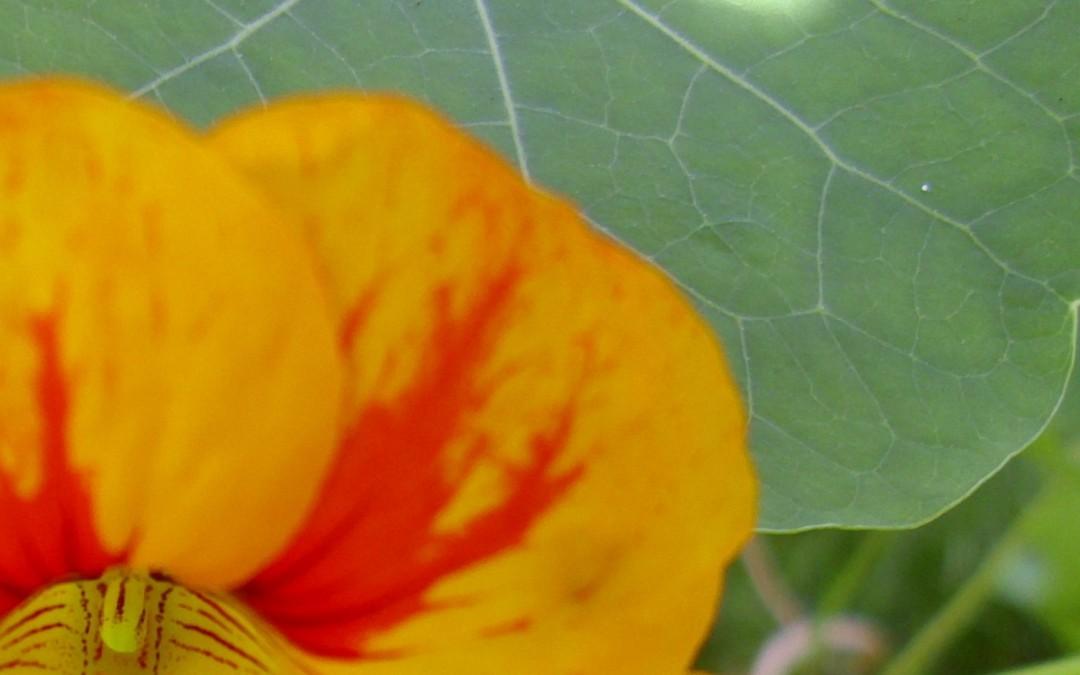 Raus aus der Bewertung – rein ins Glück! Eine nützliche Übung aus dem Veränderungscoaching (1)