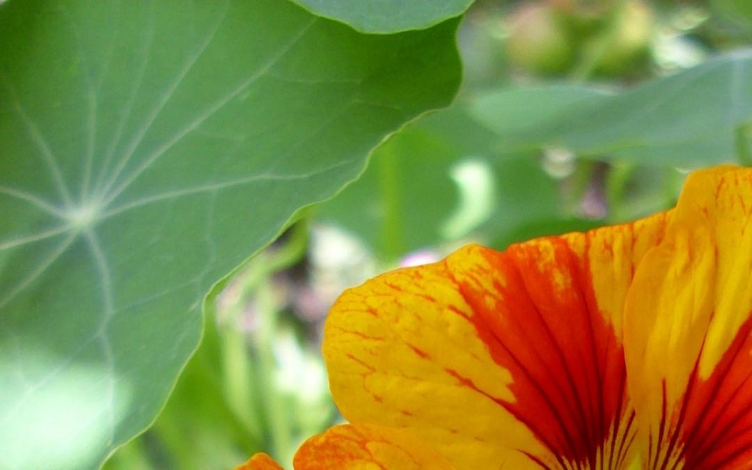 Raus aus der Bewertung – rein ins Glück! Eine nützliche Übung aus dem Veränderungscoaching (2)